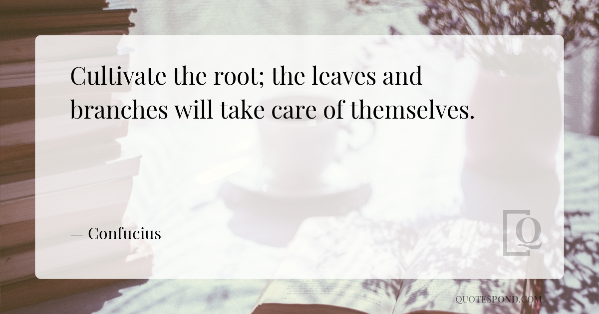 cultivate-the-root-the-leaves-and-branches-will-take-care-of-themselves
