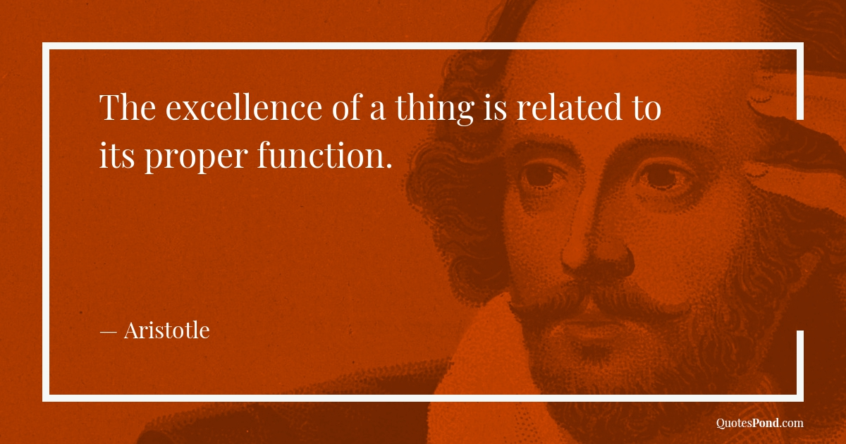 the-excellence-of-a-thing-is-related-to-its-proper-function